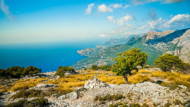 Actividades Mallorca